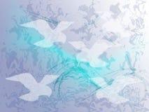 Birds background Stock Photo