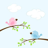 Birds. Background with two birds on the branches, illustration Stock Images