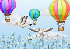 Birds and balloons Stock Photos