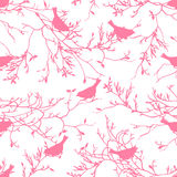 Birds on the bare branches seamless vector print. Birds on the bare branches pink seamless vector print Stock Image