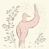 Birds beauty. cute birds. Hand drawn, cartoon style. suitable for printing on a t-shirt or sweatshirt, shirt design, print bird, sketch bird, Children's Royalty Free Stock Photos