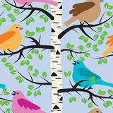 Birds and birch tree, vector  Stock Photography