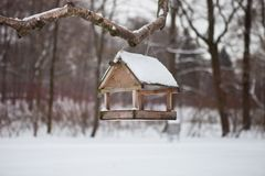 Birds in the bird feeder in the winter snow forest royalty free stock photo