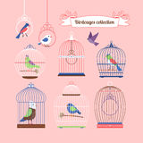 Birds and birdcages Royalty Free Stock Photography
