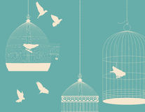 Birds and birdcages. Vintage romantic background Stock Photography