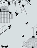 Birds and birdcages. Birds and birdcages, vintage romantic background Stock Photos
