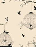 Birds and birdcages. Birds and birdcages, vintage romantic background Royalty Free Stock Images