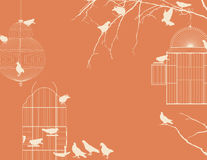 Birds and birdcages  Stock Image