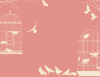 Birds and birdcages. Birds and birdcages, vintage romantic background Stock Photography