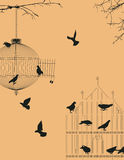 Birds and birdcages  Stock Photos