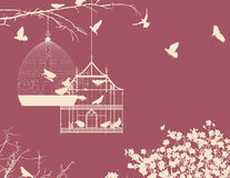 Birds and birdcages. Birds and birdcages, vintage romantic background Stock Image