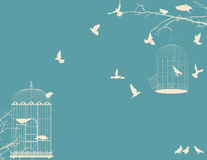 Birds and birdcages. Vintage romantic background Royalty Free Stock Photos
