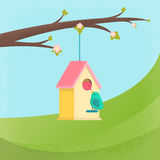 Birds and birdhouse, spring Stock Photos