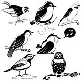 Birds black collection Stock Image