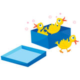 Birds in a box Stock Photo