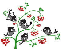 Birds on a branch. Vector illustration of birds on a branch vector illustration