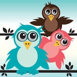 Birds on branch Stock Image