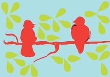 Birds on a branch Stock Photos