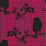 Birds on the branch of cherry. Vector illustration. Vector illustration of a robin that sits on a branch of cherry that blooms Stock Photo