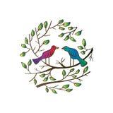 Birds on branch. Hand drawing illustraion Royalty Free Illustration