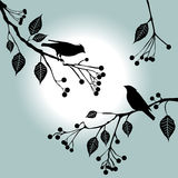 Birds on the branch. Summer days. Birds on the branch. Summer days - 2d vector royalty free illustration