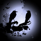 Birds on the branch. Summer night. 2d vector Stock Images