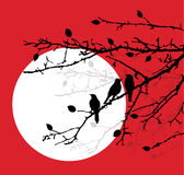 Birds on branches Royalty Free Stock Photo