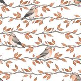 Birds on branches. Floral seamless pattern 29 royalty free illustration