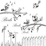 Birds on branches Royalty Free Stock Photos