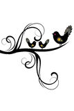 Birds and Branches Silhouette Royalty Free Stock Photo