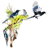 Birds background, frame. Decoration with wildlife scene. Hand drawn watercolor illustration stock illustration