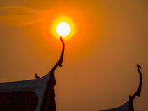 Birds on Buddhist temple at sunset Royalty Free Stock Images