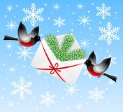 Birds bullfinchs carry an envelope with a silver f Royalty Free Stock Photography