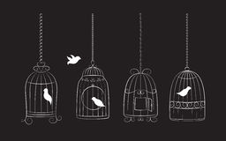 Birds in cages. Collection of bird cages with birds  on black background Stock Image