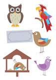 Birds cartoon. Stock Photography