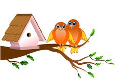 Birds cartoon. Two birds on a tree branch Stock Image