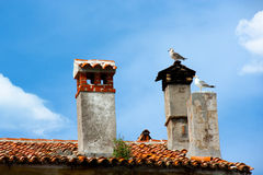 Birds on Chimney Royalty Free Stock Photos