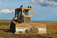 Birds chirping over construction Royalty Free Stock Photography