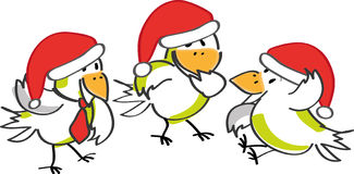 Birds and Christmas Stock Image