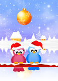 Birds at Christmas Stock Images