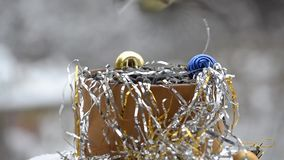 Birds in Christmas stock video footage