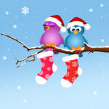 Birds with Christmas socks Stock Image