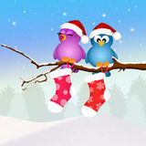 Birds with Christmas socks Stock Photography
