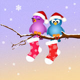 Birds with Christmas socks Royalty Free Stock Images