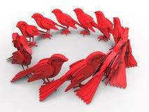 Birds circular pattern Royalty Free Stock Image