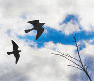 Birds on the cloudy sky Royalty Free Stock Images