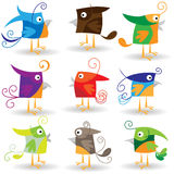 Birds collection Royalty Free Stock Photo