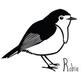 Birds collection Robin Black and white vector Royalty Free Stock Photography