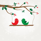Birds couple on the holly berry branch. Royalty Free Stock Photography