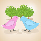 Birds couple in love Stock Images